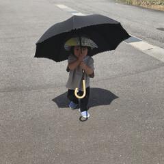 日傘/外遊び/1歳4ヶ月/娘/令和元年フォト投稿キャンペーン 日傘をさす末っ子ちゃん。 私がさしてたら…