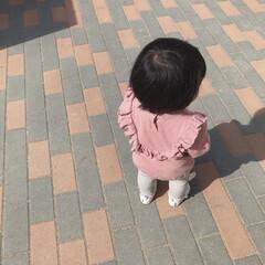 1歳3ヶ月/娘/おでかけ/公園/おでかけワンショット 昨日は天気が良かったので末っ子ちゃんと公…