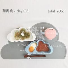 生後9ヶ月/赤ちゃん/離乳食/おうちごはん/グルメ/フード 今日の離乳食。 あんかけ丼が大HIT♡ …
