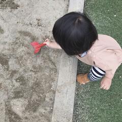 1歳3ヶ月/娘/砂遊び/砂場/公園/おでかけ/... サンダルだから足に砂が付くのが嫌で砂場の…