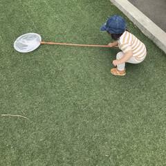キッズコーデ/1歳4ヶ月/娘/外遊び/令和元年フォト投稿キャンペーン 虫取り網を持ち上げようと必死な末っ子ちゃ…