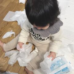 いたずら/1歳/赤ちゃん なーんか静かだなぁと思ったら やられまし…