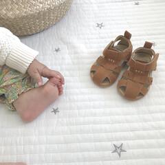 西松屋/サンダル/ファッション 末っ子ちゃんのサンダル買いました♡ こん…