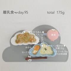 離乳食/赤ちゃん/生後9ヶ月/フード/おうちごはん 今日の離乳食。 鼻詰まりでも食べやすいよ…