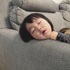 ぶちゃカワ/寝顔/1歳3ヶ月/娘 今日の午前中、寒気がしたので毛布にくるま…