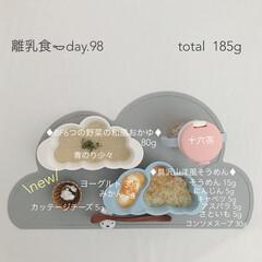 離乳食/赤ちゃん/生後9ヶ月/フード/おうちごはん 今日の離乳食。 カッテージチーズ始めまし…
