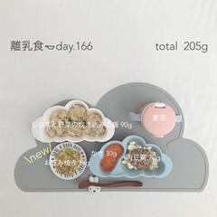 生後11ヶ月/離乳食/離乳食後期/赤ちゃん/おうちごはん/グルメ/... 今日の離乳食。 お好み焼き作りました◡̈…