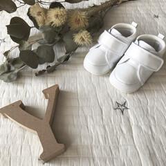 靴/子供服/ベビー用品/スニーカー/ファーストシューズ/ファッション 末っ子ちゃんのファーストシューズ👟 色々…