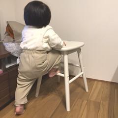 末っ子/女の子/1歳1ヶ月/赤ちゃんのいる生活/赤ちゃん 末っ子ちゃん段々活発に動くようになってき…