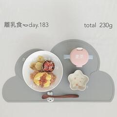 生後11ヶ月/手作りごはん/離乳食後期/離乳食/おうちごはん/グルメ/... 1月23日の離乳食。 オムライス作ってみ…