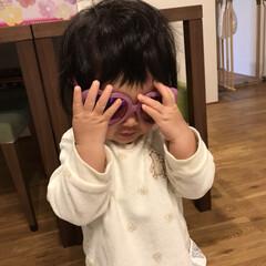 かわいい/1歳1ヶ月/娘/サングラス/赤ちゃん お姉ちゃんのサングラスをかける末っ子ちゃ…