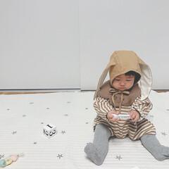 赤ちゃん/ハロウィン/ファッション/うさぎ/ハロウィン仮装/9ヶ月 またまたうさぎの仮装🐰 うさぎが可愛すぎ…