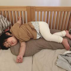 お昼寝/寝相/寝顔/1歳3ヶ月/娘 今日の寝相。 今日は枕の上に乗って腕を変…