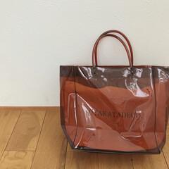 クリアバッグ/ファッション雑貨/雑貨/100均/ダイソー/ファッション/... この前購入したダイソーのクリアバッグにミ…