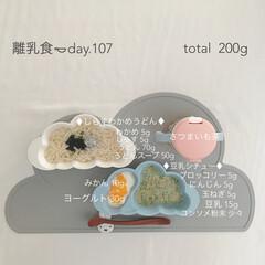 赤ちゃん/離乳食/生後9ヶ月/おうちごはん/フード 今日の離乳食。 しらすわかめうどん、絶対…