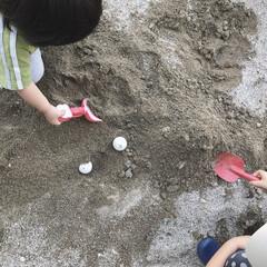 息子/娘/砂場遊び/砂遊び/砂場/きょうだい/... 砂場で遊ぶ末っ子ちゃんと息子くん。 息子…