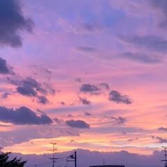 夕焼け雲/夕陽/夕日/祭り/夏祭り/夕焼け/... 今日は近所の市民祭りに行ってきました。 …(8枚目)