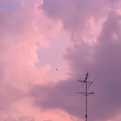 情景/夕方/雲/夕景/夕焼け 最近、夕焼けが綺麗です✨