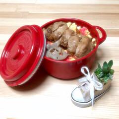 人気商品/売り切れ/照り焼きチキン/多肉ちゃん/多肉植物/ランチポット/... おはようございます! 大阪は今日も雨でジ…
