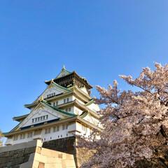 さくら/桜/大阪城/お花見デート/お花見/春のフォト投稿キャンペーン/... 昨日はお花見&フリースケートをしに、久々…