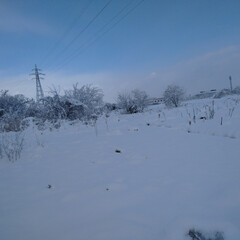 散歩/冬/暮らし たった1日で、平地で10センチ以上の積雪…