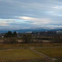 山/寒い⛄ とうとう❗真っ白です 平地にも雪が積もる…(2枚目)