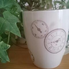 マグカップ 時計の柄がお気に入りのマグカップは、30…