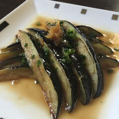 秋茄子/おうちごはん/しょうが焼き/簡単/手料理 秋茄子をgetしたので、しょうが焼きにし…