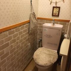 ペイントDIY/腰壁風/リフォーム/トイレ/壁紙リメイク/DIY/... 築14年の我が家。 少しずつガタがき始め…