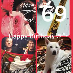紀州犬琥珀ちゃん/お部屋は色とりどり/永ちゃん誕生日おめでとう/矢沢永吉69歳ロックの年!!/ものの3分/吸着テーブルクロス/... こんな69歳いないと思う💖ロック魂 永ち…