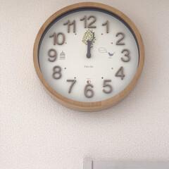 お気に入り🎵/枝/木の幹/時計の針/電波時計/時計/...