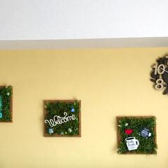 DIY/100均/セリア/ダイソー/ニトリ/時計/... リビング壁面🏠