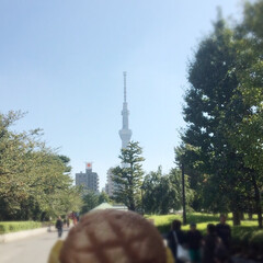 浅草/東京/メロンパン/花月堂/おでかけ/フード/... 浅草 花月堂のメロンパンとスカイツリー🗼