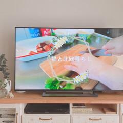 55型テレビ/コーヒータイム/YouTube/毎日のルーティン/ダイニング/IKEA/... 朝のコーヒータイム☕️  毎日、コロナの…(1枚目)
