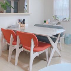ダイニングテーブルセット/インテリア/ニトリ/家具/NITORI/ニトリ家具 大きさ&カラー&座り心地💕 お気に入りで…(1枚目)