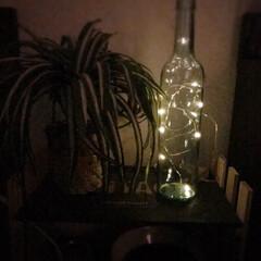 点滅ナシ/間接照明/LEDライト/空きビン/100均/セリア/... ベッドサイド🌙  明るくても暗くても眠れ…