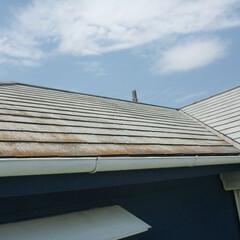 ホームインスペクション/インスペクション/住宅診断/検査/屋根 屋根表面に劣化が見られます。