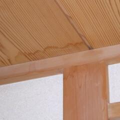 ホームインスペクション/インスペクション/住宅診断/検査 【室内の調査風景】天井に、水染みの跡や劣…