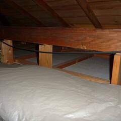 ホームインスペクション/インスペクション/住宅診断/検査 天井点検口より内部を確認しています。小屋…