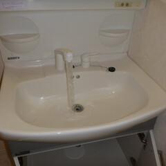 ホームインスペクション/インスペクション/住宅診断/検査 一定時間水を流し、水量不足や、水の着色の…