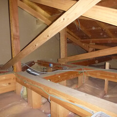 ホームインスペクション/インスペクション/住宅診断/検査 天井点検口より内部を確認しています。火打…