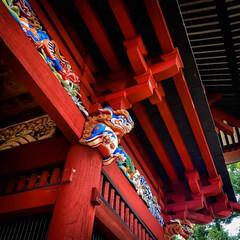 鯉の明神/小山市/栃木県/高椅神社 神社巡り 色鮮やかな「楼門」です😆✨  …(5枚目)