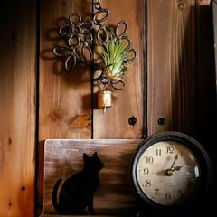 木の香り/まったり/眠気 午後2:00頃は、まったり眠くなる時間帯…