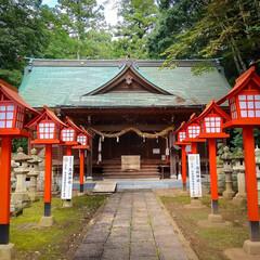 鯉の明神/小山市/栃木県/高椅神社 神社巡り 色鮮やかな「楼門」です😆✨  …(4枚目)