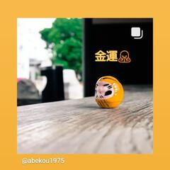 ご利益/一乗院/茨城県/黄色いだるま/だるまさん/金運 だるまさん 黄色は、「金運♥️」  頼み…