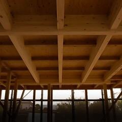 木の香/木造住宅 規則正しいグリッド工法 木の香が漂います