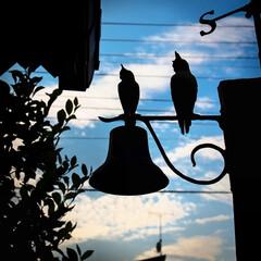 虫の音/ふくろう/風見鶏/秋の空/やっぱり木が好き すっかり秋の空に 虫の音が聞こえてきます…(3枚目)