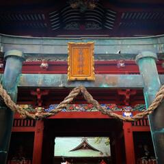 鯉の明神/小山市/栃木県/高椅神社 神社巡り 色鮮やかな「楼門」です😆✨  …(3枚目)