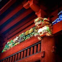 鯉の明神/小山市/栃木県/高椅神社 神社巡り 色鮮やかな「楼門」です😆✨  …(6枚目)
