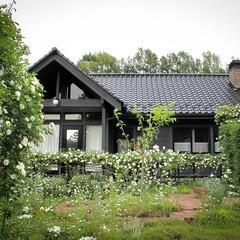 阿部興業株式会社/栃木県/平屋/木の家/ニゲラ/バラ/... 緑と花に囲まれた家  以前訪れたお客様の…(5枚目)
